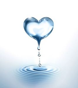 Heart image-1